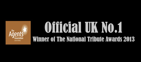 Winners of the National Tribute Awards 2013